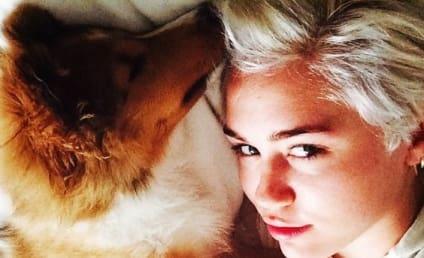 Miley Cyrus Adopts New Dog: Meet Emu!