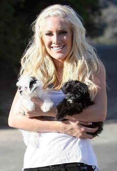 Heidi's Pups