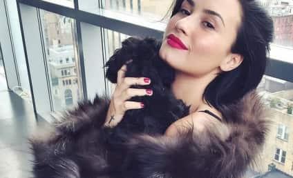 Demi Lovato Wears Fur Coat, Sparks Online Outrage