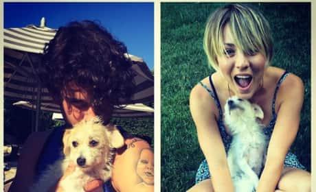 Kaley Cuoco, Dogs