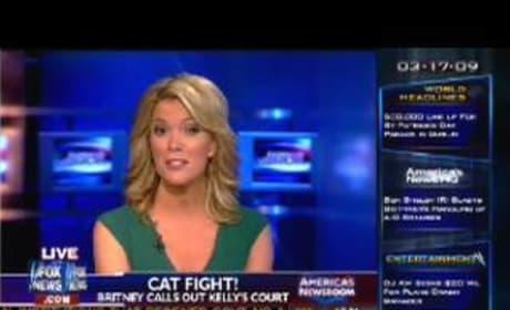 If U Seek Amy on Fox News