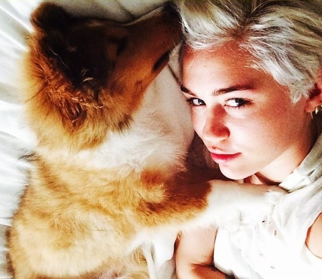 Miley Cyrus with Dog