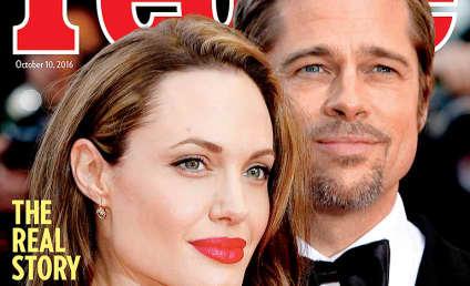 Brad Pitt: Angelina Jolie RUINED MY LIFE! - The Hollywood ...