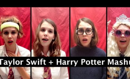 Taylor Swift Meets Harry Potter in Ultimate Pop Culture Mash-Up