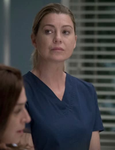 Ellen as Meredith