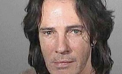 Rick Springfield Popped For DUI, Poses For Really Sad Mug Shot