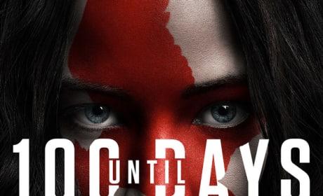NSFW Mockingjay Poster