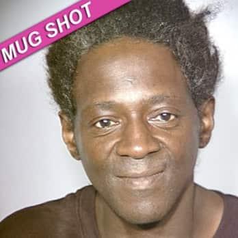 Flavor Flav Mug Shot