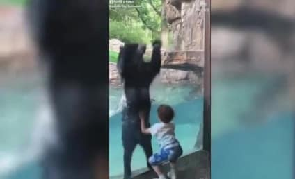Bear Jumps for Joy with Boy in Cutest Video You'll See Today