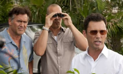 Burn Notice Spinoff: Possibly in the Works!