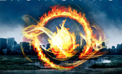 Divergent Casting Rumors: Who Will Play Four?