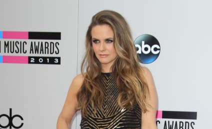 Lake Bell, Alicia Silverstone Join Fight Against Dogfighting
