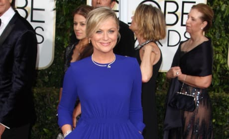 Tina Fey and Amy Poehler's Bill Cosby jokes were ...