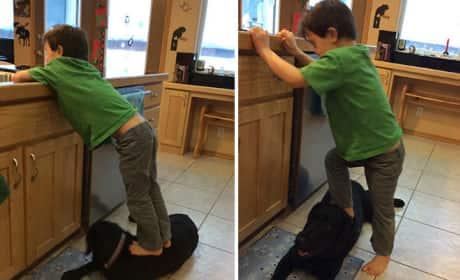 Sarah Palin's Son Steps on Family Dog