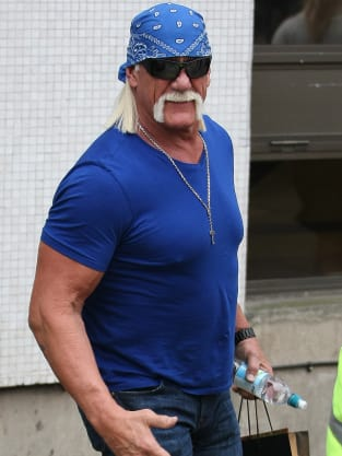 THE Hulk Hogan