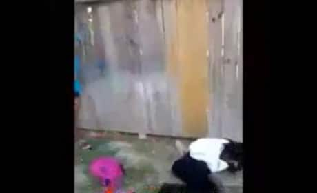Should Sharkeisha be prosecuted for this assault?