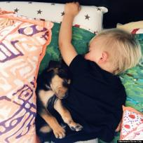 Dog Sleeps with Toddler
