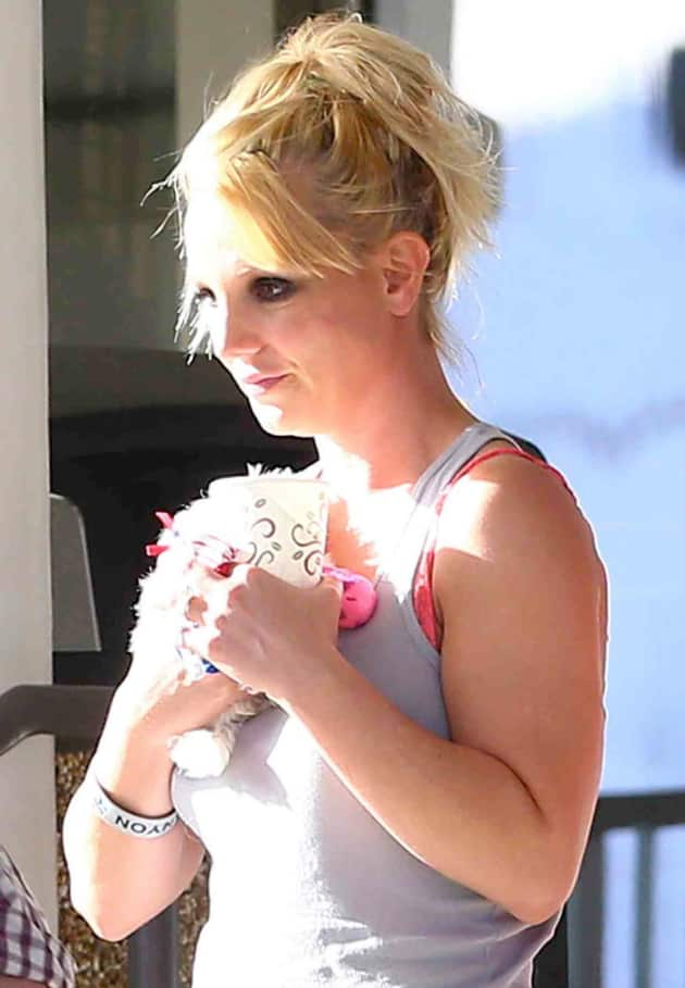 Britney Out For a Stroll