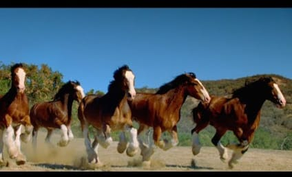 Belgian-Owned Budweiser's World Cup Commercial Will America You in the Face!