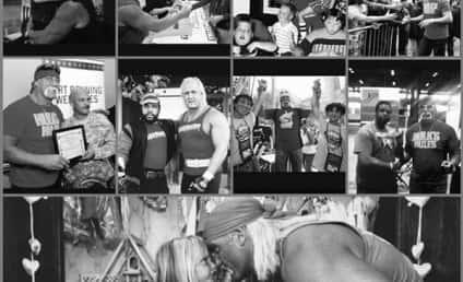 Brooke Hogan Defends Hulk Hogan… Via Poetry!