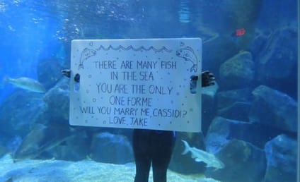 15 Cringeworthy Ways to Propose: Don't Try These at Home... Or Anywhere