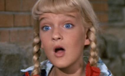 Susan Olsen, Former Brady Bunch Star, Fired for Homophobic Remarks