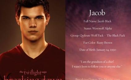 Twice the Breaking Dawn? Reports Confirm Fifth Twilight Saga Film