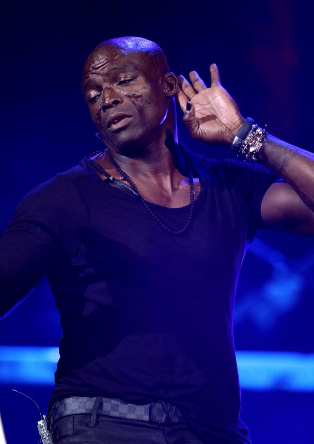 Seal in Vegas