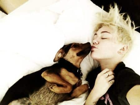 Miley and Her Dog
