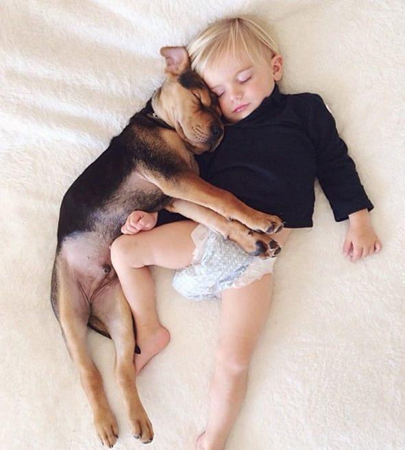 Baby and Dog Sleep Together