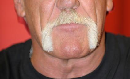 Hulk Hogan: I Must Answer Back!