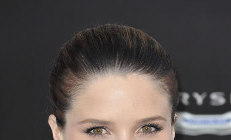 What is your reaction to Sophia Bush's gay marriage stance?