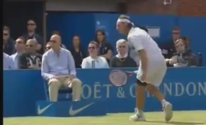 David Nalbandian Kicks Tennis Official During Match, Faces Criminal Assault Investigation