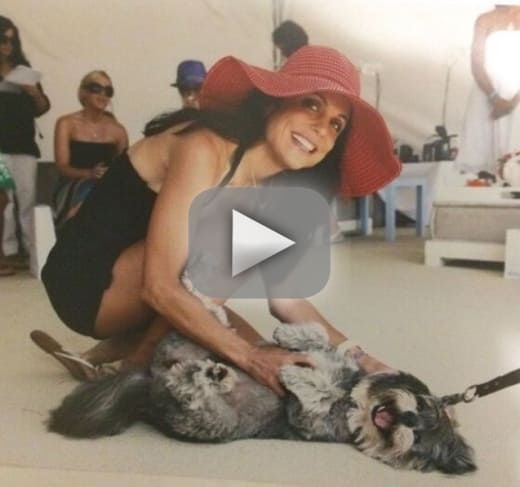 Bethenny frankel shares devastating news about her dog cookie