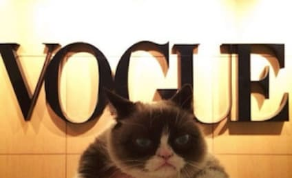 Grumpy Cat Visits Vogue, is Unenthralled