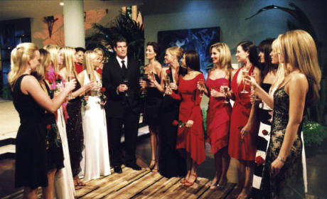 17 Most Shocking Moments in Bachelor History: Who Can Forget #13?!