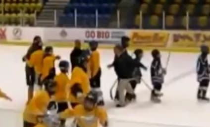 Martin Tremblay, Youth Hockey Coach, Sentenced to Jail for Tripping Incident