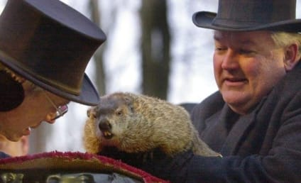 Punxsutawney Phil Handler Responds to Indictment, Takes Fall For Groundhog Day Mishap