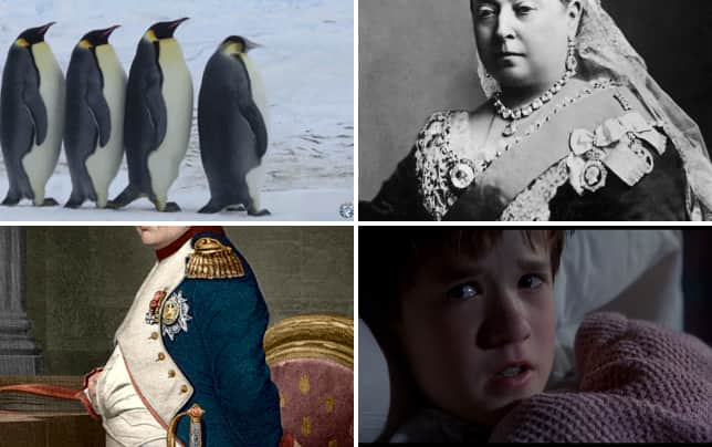 11 well known facts that are totally wrong penguins mate for life