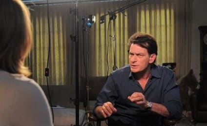 Charlie Sheen and Brooke Mueller: Back Together