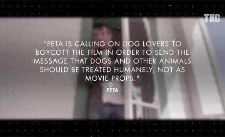 A Dog's Purpose Faces Boycott