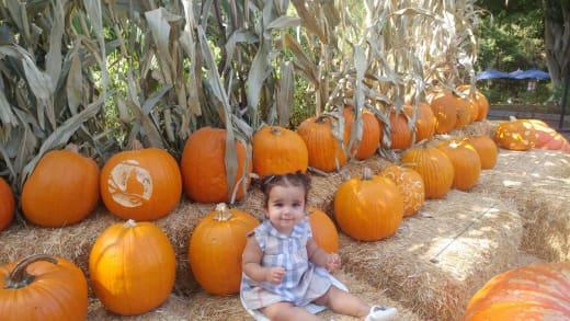 Dream Kardashian in a Pumpkin Patch