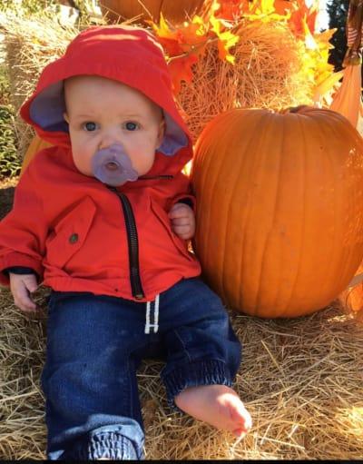 Jackson Finds a Pumpkin