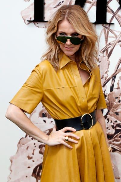 Celine Dion Snapshot