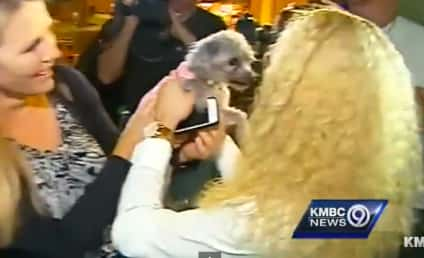 Woman Reunites with Dog After 5 Years Apart: Watch!
