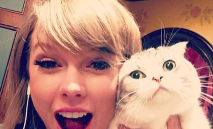 Taylor Swift: First to 50 Million Instagram Followers!