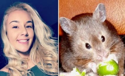 Student Claims Airline Forced Her to Flush Emotional Support Hamster Down Toilet