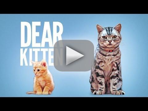 Dear Kitten Friskies Commercial
