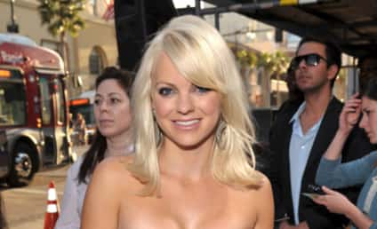 Red Carpet Fashion: Observe and Report on Anna Faris