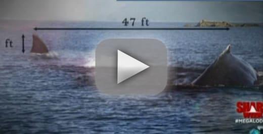 Megalodon: Fake Documentary Kicks Off Shark Week 2013 - The